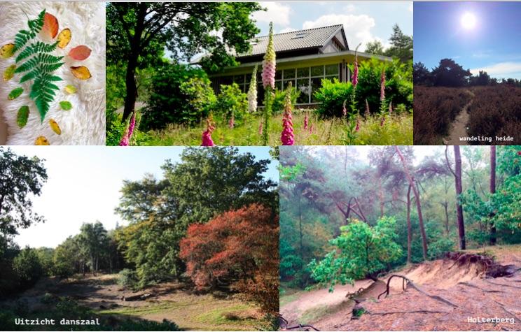 Locatie en omgeving Biodanza weekend Holterberg